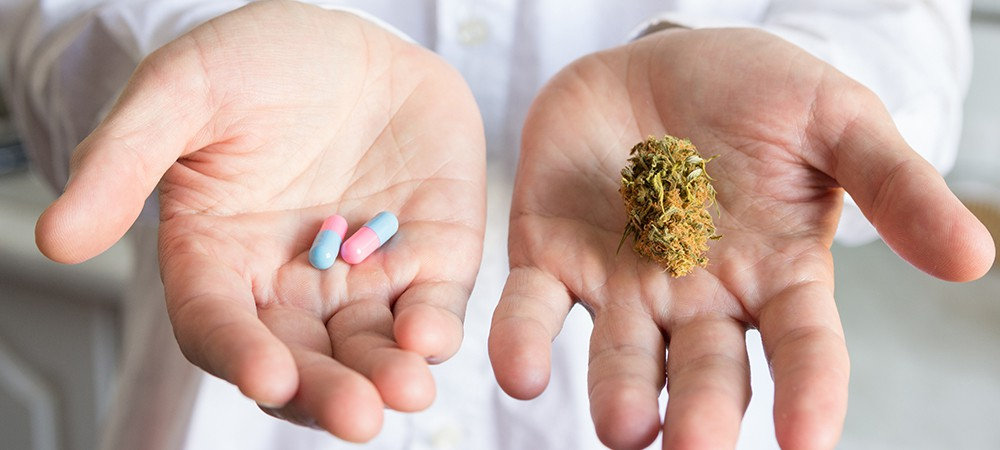 medical cannabis and elderly